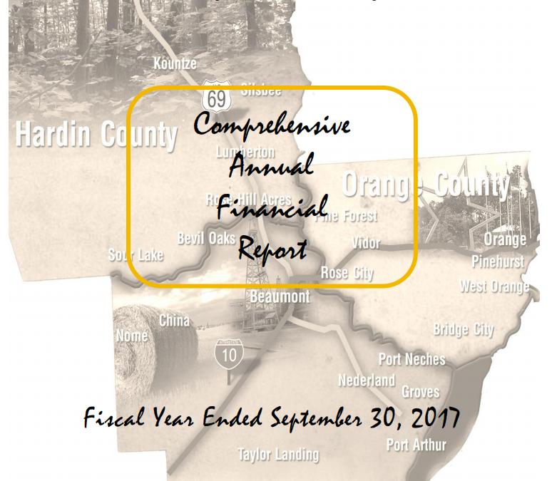 Comprehensive Annual Financial Report 2019
